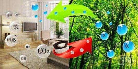 2021中国(深圳)国际洁净技术与设备展览会